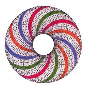 VBM-toroid_color